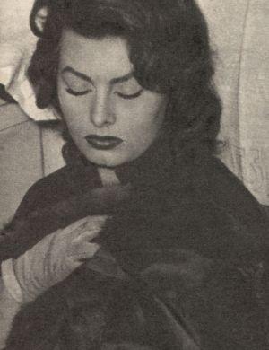 Sophia Loren schläft