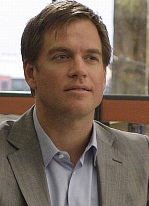 Michael Weatherly in