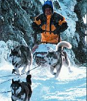 Cuba Gooding Jr. in &quot;Snow Dogs&quot;