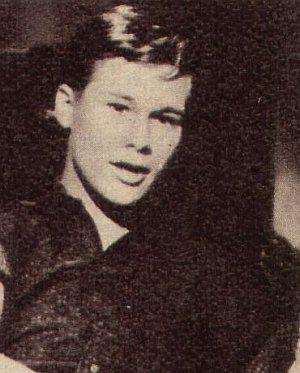 Brandon de Wilde