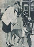 Liselotte Pulver mit Anhang beim Stadtbummel durch Hamburg