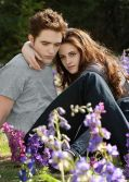 Robert Pattinson und Kristen Stewart auf ihrer Blumenwiese in &quot;Die Twilight Saga: Breaking Dawn - Biss zum Ende der Nacht (Teil 2)&quot;