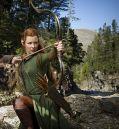 """Evangeline Lilly zu """"Der Hobbit: Smaugs Einöde (3D)"""""""