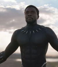 Chadwick Boseman, Black Panther 3D (2018)