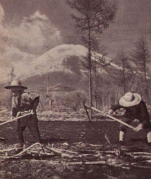 Die Bauern bei ihrer Arbeit