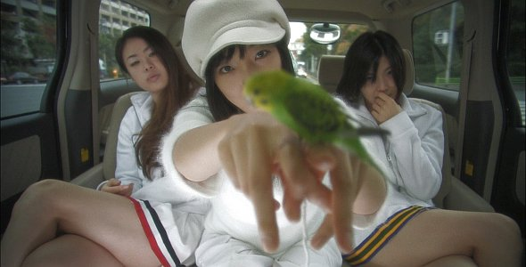 Love Exposure (Ai no mukidashi, 2008)