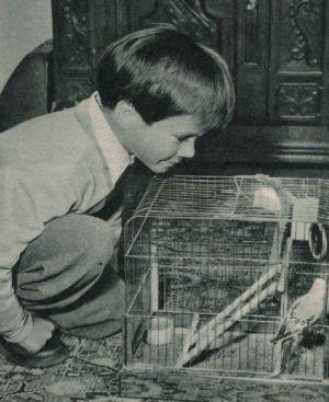 Oliver Grimm mit Wellensittich Friedolin