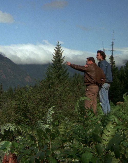 Ausgerechnet Alaska (DVD) 1990