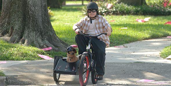 Ace Ventura 3 - Der Tier-Detektiv (Quer) 2009