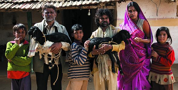 Live aus Peepli - Irgendwo in Indien (quer) 2009