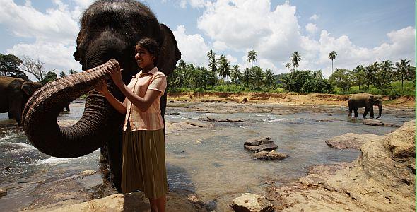 Chandani und ihr Elefant (quer) 2010