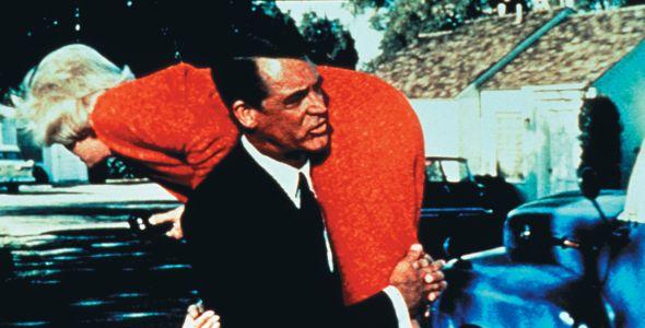 Hauch von Nerz, Ein (That Touch of Mink, 1961)