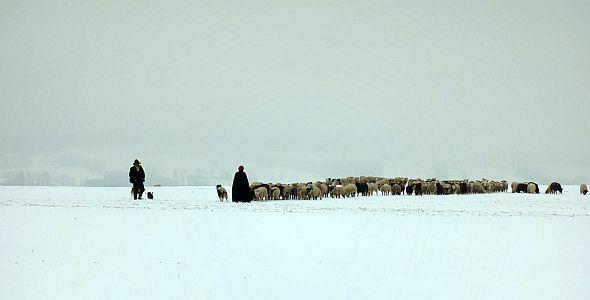 Winternomaden (quer) 2012