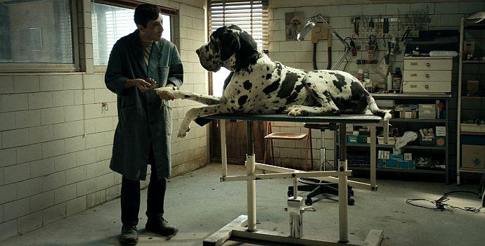"""Marcello Fonte in """"Dogman"""" (2018)"""