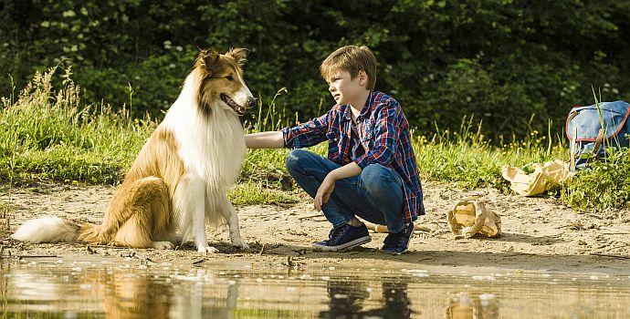 """Nico Marischka in """"Lassie - Eine abenteuerliche Reise"""" (2020)"""