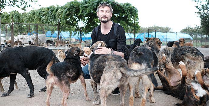 """Martin Skalsky in """"Cody - Wie ein Hund die Welt verändert"""" (2018)"""
