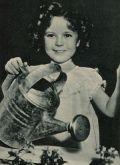 Kinderstar Shirley Temple