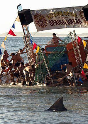 The Bay: Hai-Alarm! (Szene) 2005