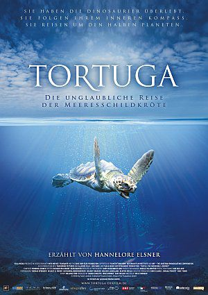 Tortuga - Die unglaubliche Reise der Meeresschildkröte (Kino) 2009
