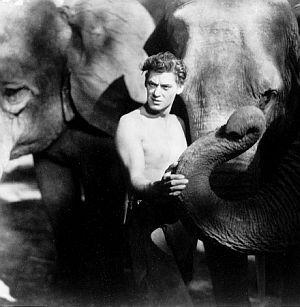 Johnny Weissmüller, Tarzan, der Affenmensch (Szene 01) 1932