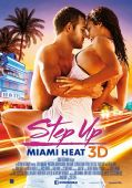 Step up: Miami Heat in 3D
