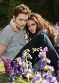 """Robert Pattinson und Kristen Stewart auf ihrer Blumenwiese in """"Die Twilight Saga: Breaking Dawn - Biss zum Ende der Nacht (Teil 2)"""""""