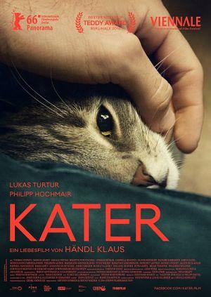 Kater (Kino) 2016