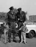 Funkstreife Isar 12 (Szene) 1961