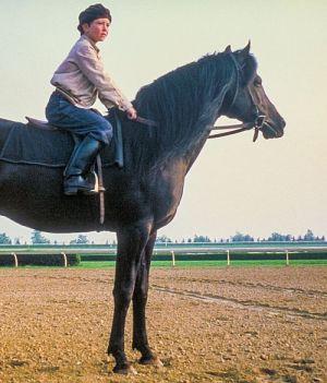 Der schwarze Hengst (Black Stallion, 1979)