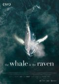 The Whale and the Raven (2019)