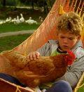 Die Kinder vom Alstertal (1998)